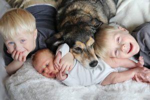 Family-baby-dog